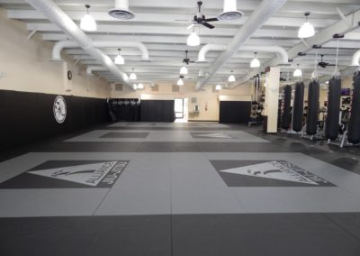 Uzcategui Brazilian Jiu Jitsu Mat Space, Wilmington NC
